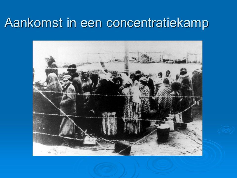 Aankomst in een concentratiekamp