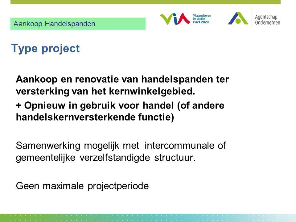 Type project Aankoop en renovatie van handelspanden ter versterking van het kernwinkelgebied. + Opnieuw in gebruik voor handel (of andere handelskernv