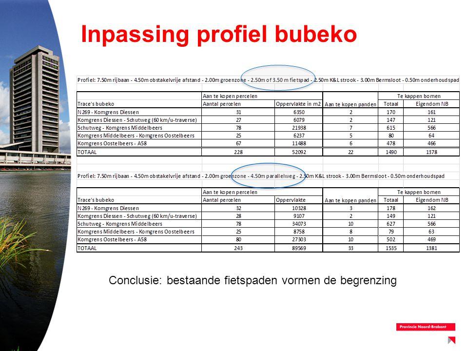 Principeprofiel bibeko –Gelijke vormgeving in de 3 kommen –Geen fietsers op de rijbaan, wel bromfietsers –Rijbaanbreedte minimaal 5,88 m en maximaal 6,20 m (50 km/h) –Dubbele asmarkering –Aanliggende strook langzaam verkeer (2,70 m): voetganger en fietser (bomen kunnen verdwijnen) –Bus halteert op de rijbaan (m.u.v.