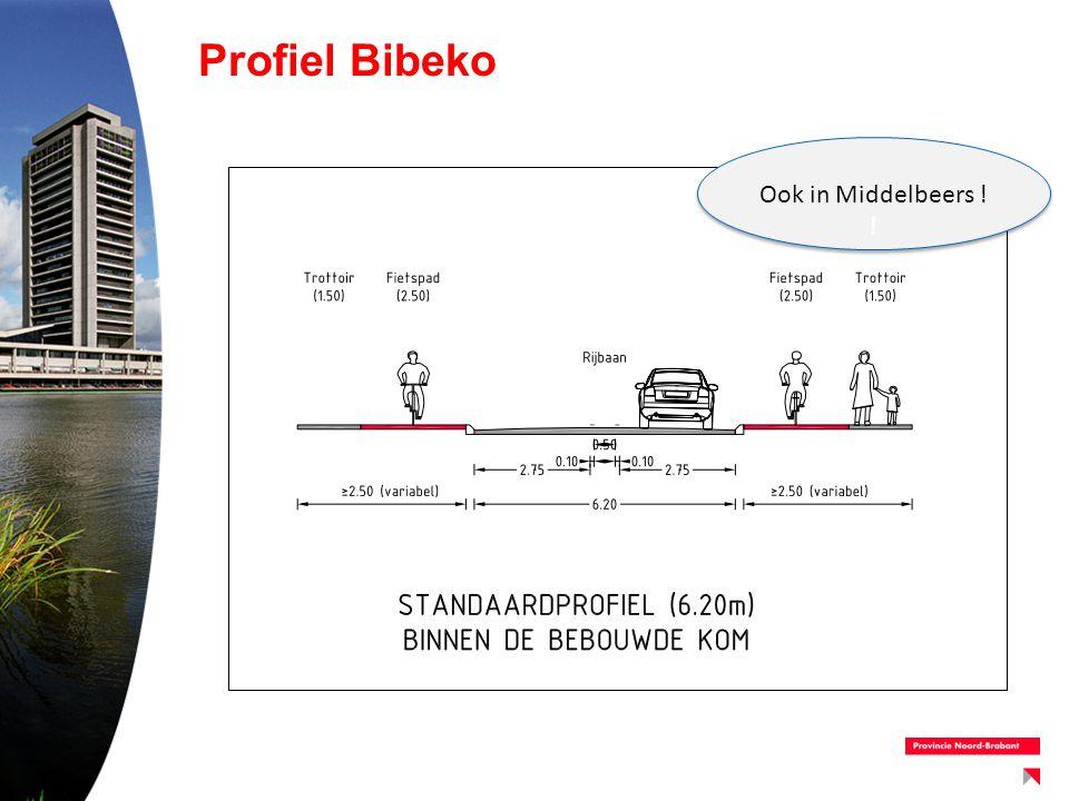 Fietsstructuur –Handhaven huidige verdeling 1 / 2 richtingen fietspaden –Sluit goed aan bij fietsstructuur Oirschot / scholen –Lokatie oversteek (1 naar 2 v.v.) in Oostelbeers verplaatsen
