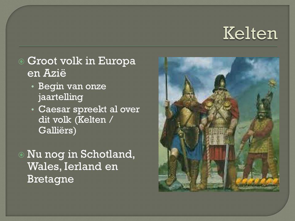  Keltische harp O.m. op Ierse euromunten