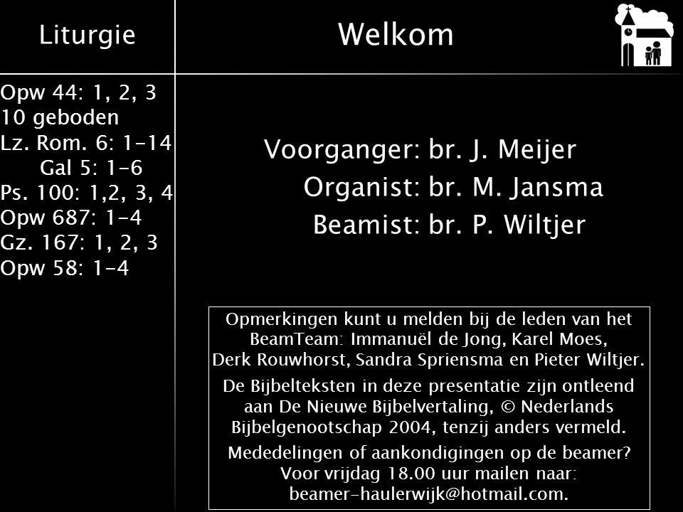 Liturgie Opw 44: 1, 2, 3 10 geboden Lz. Rom. 6: 1-14 Gal 5: 1-6 Ps. 100: 1,2, 3, 4 Opw 687: 1-4 Gz. 167: 1, 2, 3 Opw 58: 1-4 Voorganger:br. J. Meijer