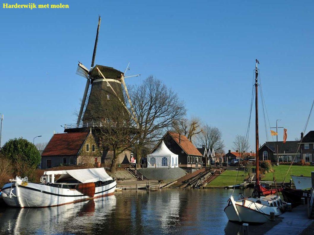 Harderwijk jachthaven
