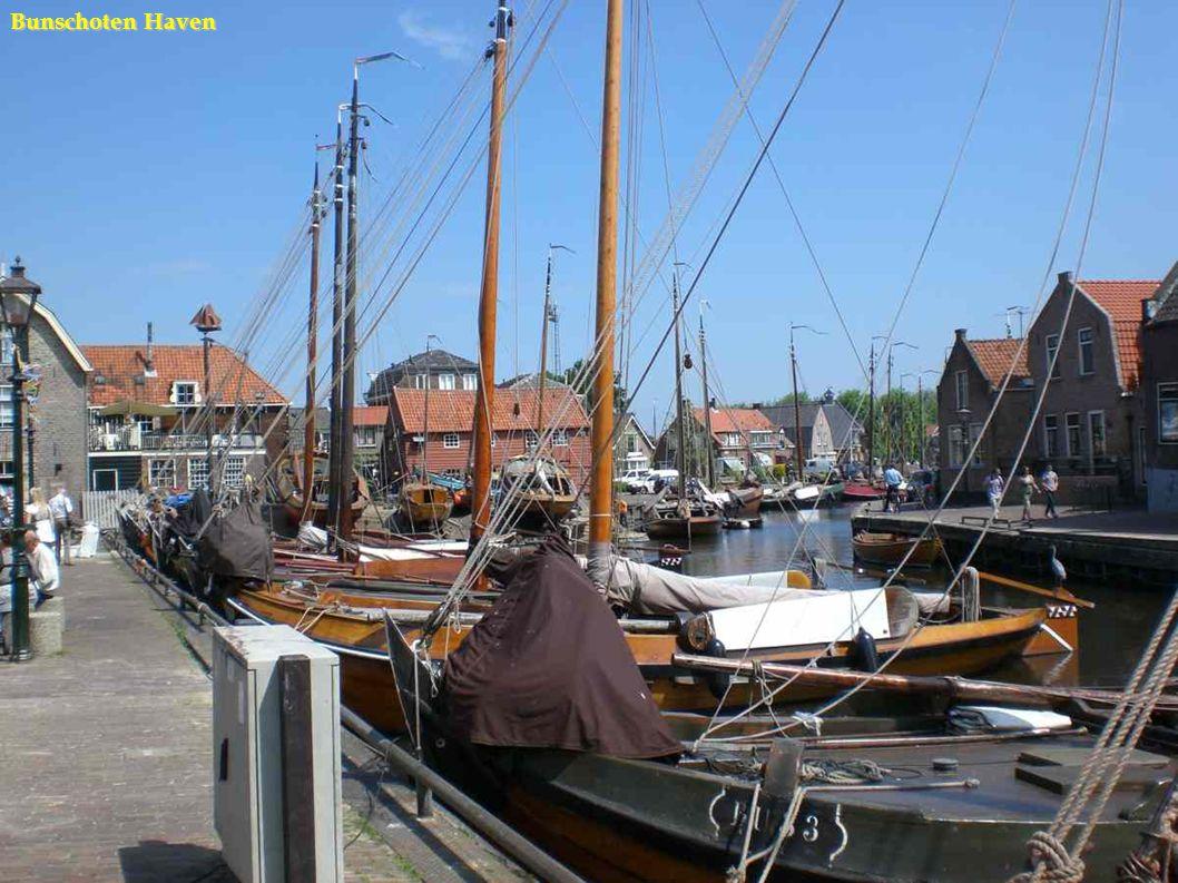Harderwijk met molen