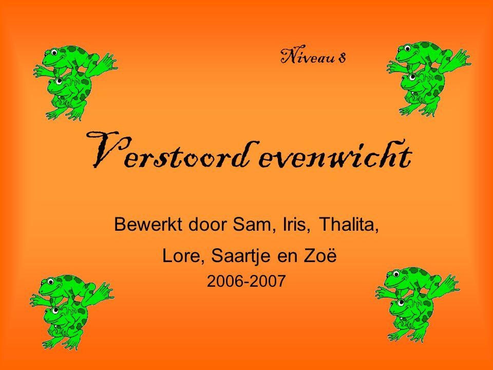 Verstoord evenwicht Bewerkt door Sam, Iris, Thalita, Lore, Saartje en Zoë 2006-2007 Niveau 8