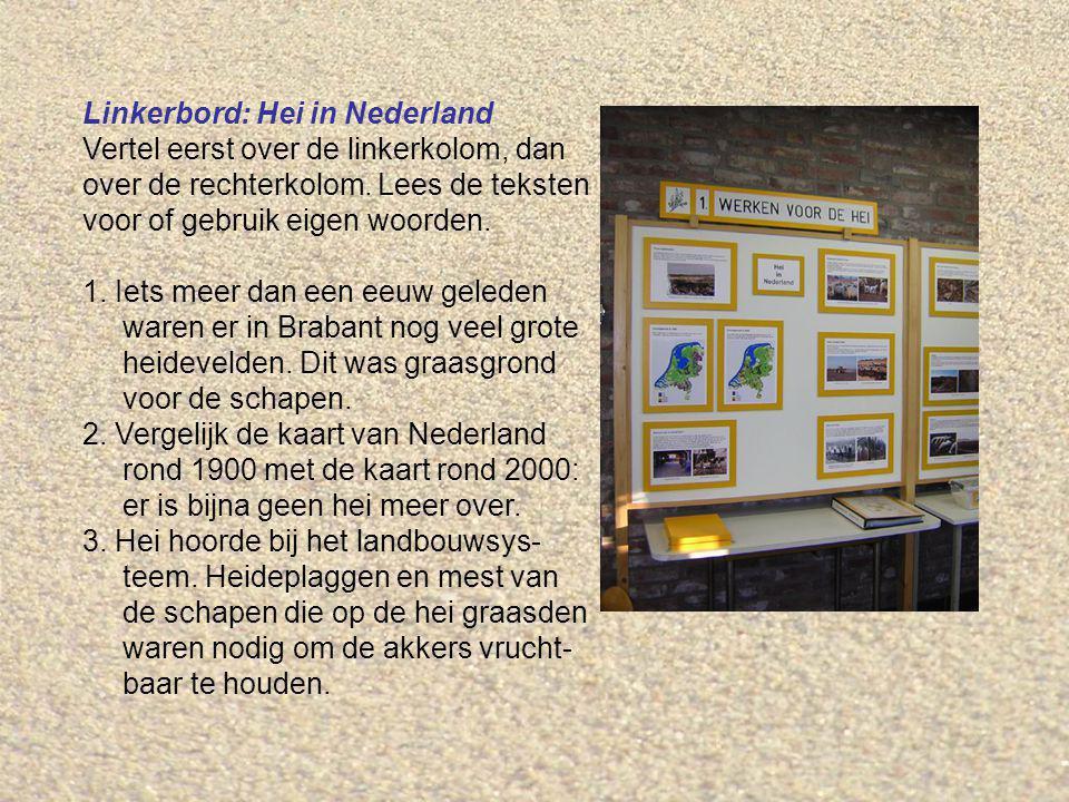Linkerbord: Hei in Nederland Vertel eerst over de linkerkolom, dan over de rechterkolom. Lees de teksten voor of gebruik eigen woorden. 1. Iets meer d