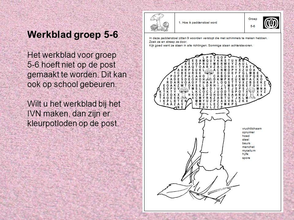 Werkblad groep 5-6 Het werkblad voor groep 5-6 hoeft niet op de post gemaakt te worden. Dit kan ook op school gebeuren. Wilt u het werkblad bij het IV