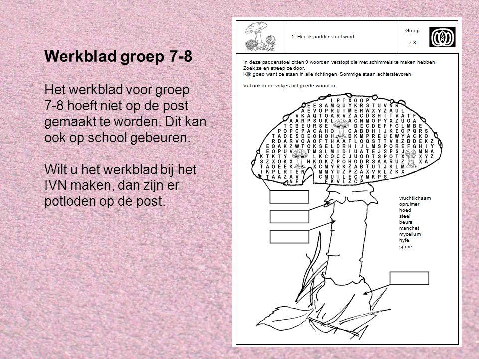 Werkblad groep 7-8 Het werkblad voor groep 7-8 hoeft niet op de post gemaakt te worden. Dit kan ook op school gebeuren. Wilt u het werkblad bij het IV