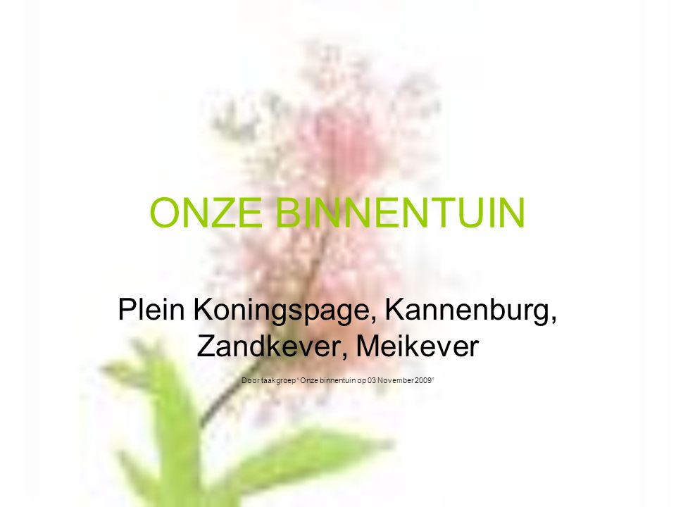 ONZE BINNENTUIN Plein Koningspage, Kannenburg, Zandkever, Meikever Door taakgroep Onze binnentuin op 03 November 2009