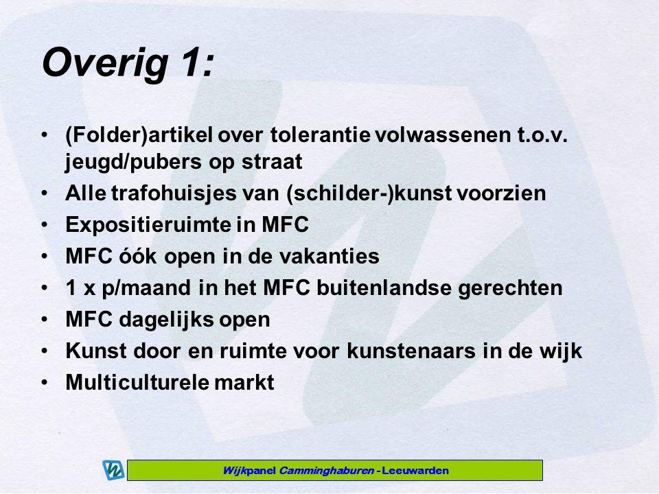 Wijkpanel Camminghaburen - Leeuwarden Overig 1: (Folder)artikel over tolerantie volwassenen t.o.v.