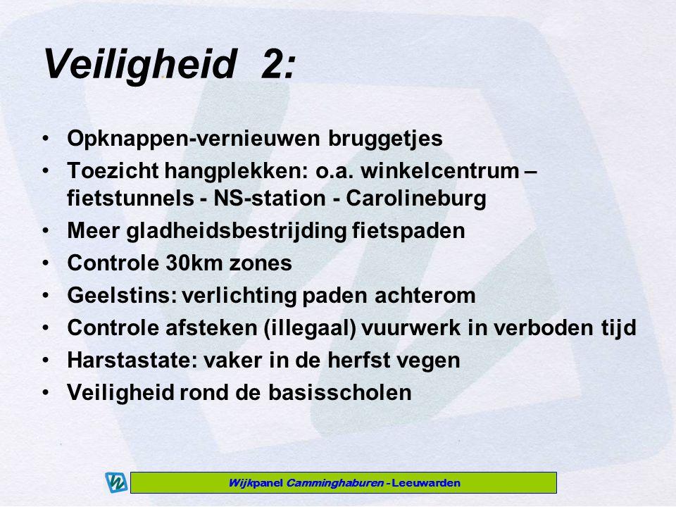 Wijkpanel Camminghaburen - Leeuwarden Veiligheid 2: Opknappen-vernieuwen bruggetjes Toezicht hangplekken: o.a.