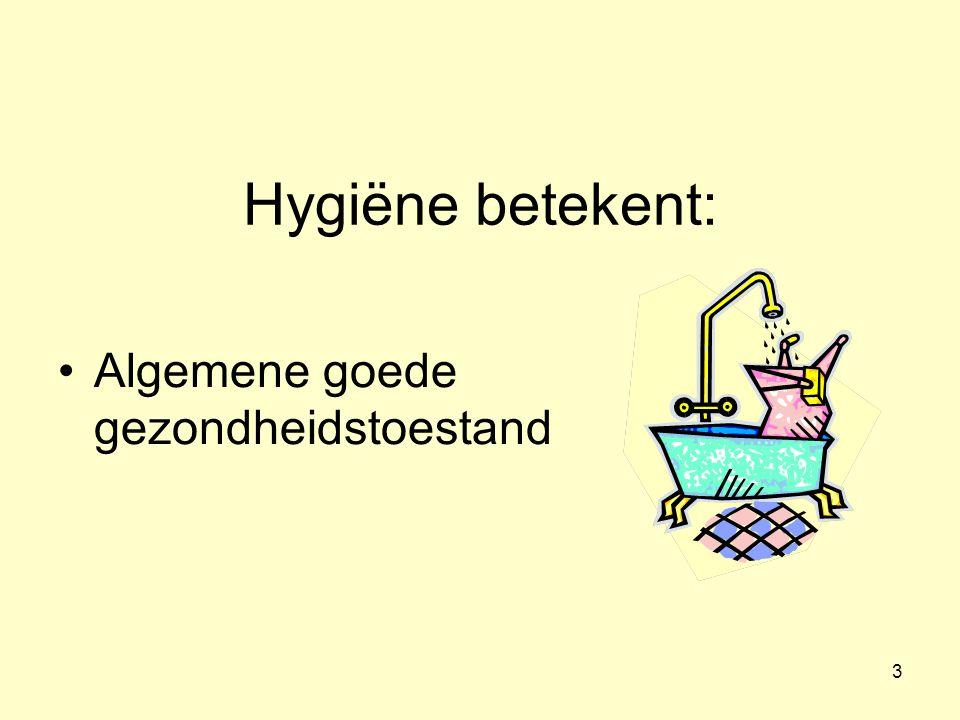 3 Hygiëne betekent: Algemene goede gezondheidstoestand