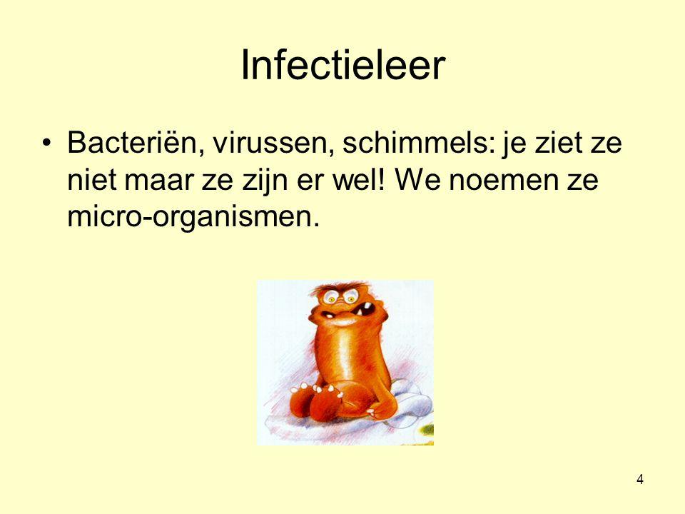 4 Infectieleer Bacteriën, virussen, schimmels: je ziet ze niet maar ze zijn er wel.