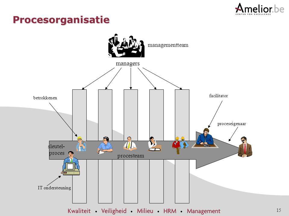 15 facilitator proceseigenaar managementteam managers betrokkenen IT ondersteuning sleutel- proces procesteam Procesorganisatie