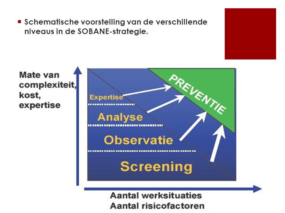  Schematische voorstelling van de verschillende niveaus in de SOBANE-strategie.