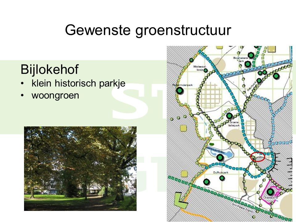 Gewenste groenstructuur Bijlokevest oude tuin met monumentale bomen woongroen