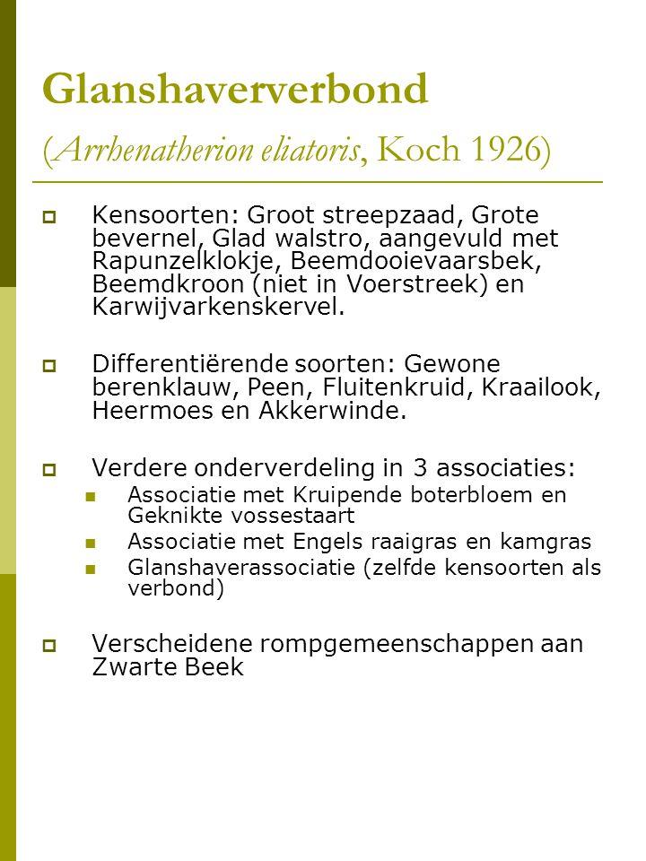 Glanshaververbond (Arrhenatherion eliatoris, Koch 1926)  Kensoorten: Groot streepzaad, Grote bevernel, Glad walstro, aangevuld met Rapunzelklokje, Beemdooievaarsbek, Beemdkroon (niet in Voerstreek) en Karwijvarkenskervel.