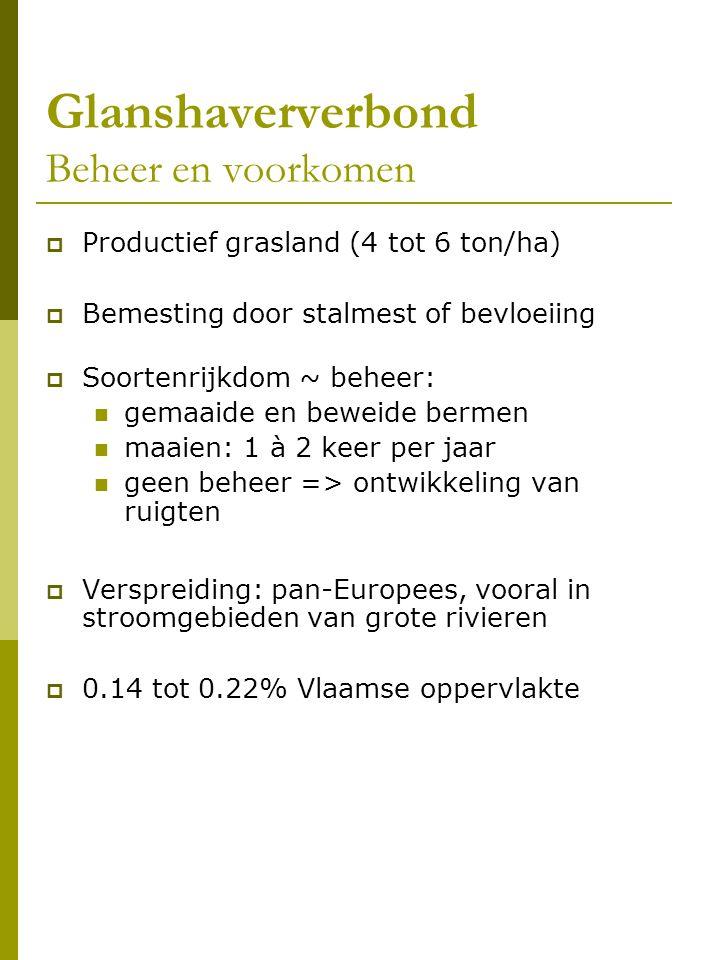 Glanshaververbond Beheer en voorkomen  Productief grasland (4 tot 6 ton/ha)  Bemesting door stalmest of bevloeiing  Soortenrijkdom ~ beheer: gemaaide en beweide bermen maaien: 1 à 2 keer per jaar geen beheer => ontwikkeling van ruigten  Verspreiding: pan-Europees, vooral in stroomgebieden van grote rivieren  0.14 tot 0.22% Vlaamse oppervlakte