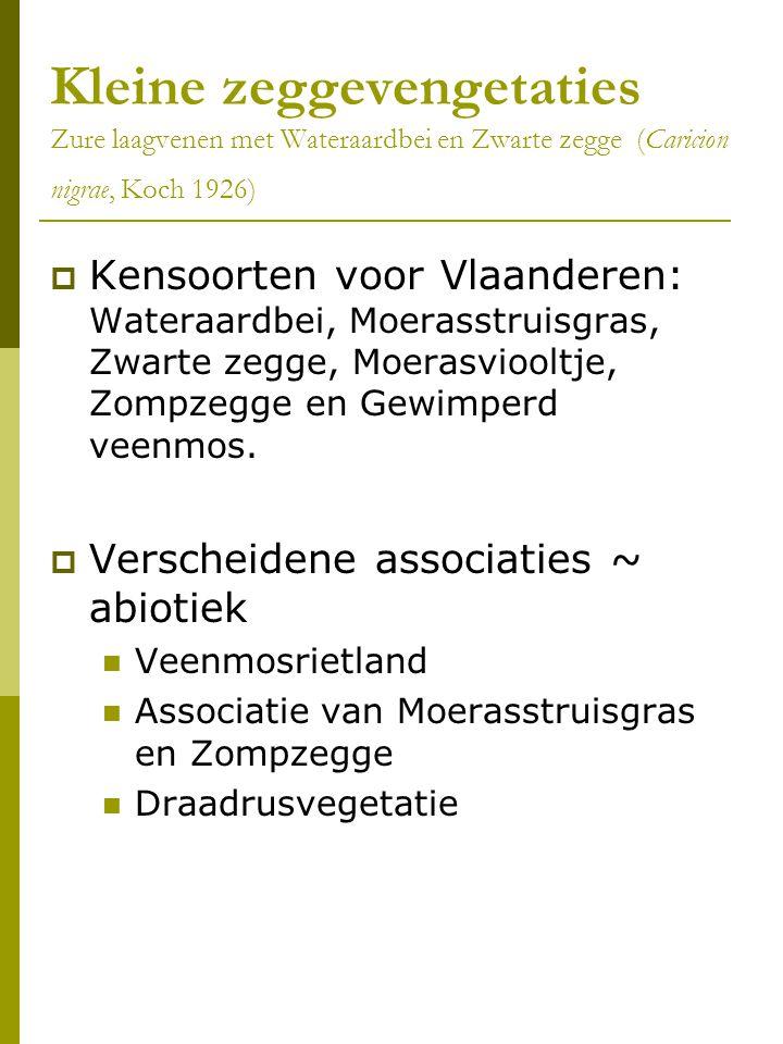 Kleine zeggevengetaties Zure laagvenen met Wateraardbei en Zwarte zegge (Caricion nigrae, Koch 1926)  Kensoorten voor Vlaanderen: Wateraardbei, Moerasstruisgras, Zwarte zegge, Moerasviooltje, Zompzegge en Gewimperd veenmos.