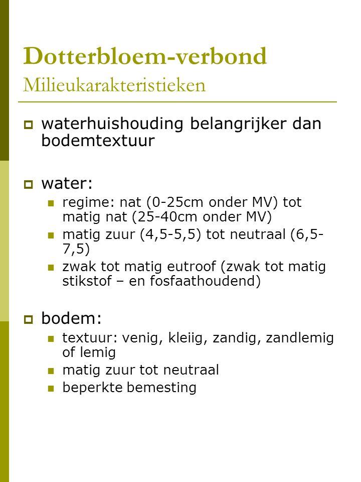 Dotterbloem-verbond Milieukarakteristieken  waterhuishouding belangrijker dan bodemtextuur  water: regime: nat (0-25cm onder MV) tot matig nat (25-40cm onder MV) matig zuur (4,5-5,5) tot neutraal (6,5- 7,5) zwak tot matig eutroof (zwak tot matig stikstof – en fosfaathoudend)  bodem: textuur: venig, kleiig, zandig, zandlemig of lemig matig zuur tot neutraal beperkte bemesting