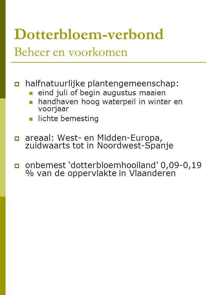 Blauwgrasland (Cirsio dissecti-Molinietum, Sissingh 1949)  kensoorten Vlaanderen:Spaanse ruiter, de hybride van Spaanse ruiter x Kale jonker, Blonde zegge, Vlozegge en Blauwe zegge  'exclusieve kensoorten' : Spaanse ruiter en de hybride Spaanse ruiter x Kale jonker  in Vlaanderen: eigen soortensamenstelling