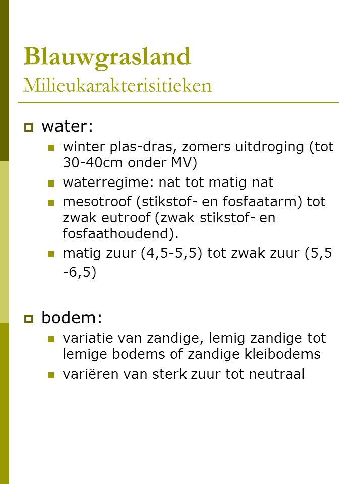 Blauwgrasland Beheer en voorkomen  halfnatuurlijke associaties: één keer maaien per jaar waterbeheer: hoog waterpeil in winter, zomer daling waterpeil  klein areaal met centrum Nederland (30 ha resteren)  in Vlaanderen beperkt tot een vijftal locaties: 0,01-0,02% van de oppervlakte in Vlaanderen (overschatting)  potentiële oppervlakte: enkele tientallen ha, in buurt van bestaande relicten