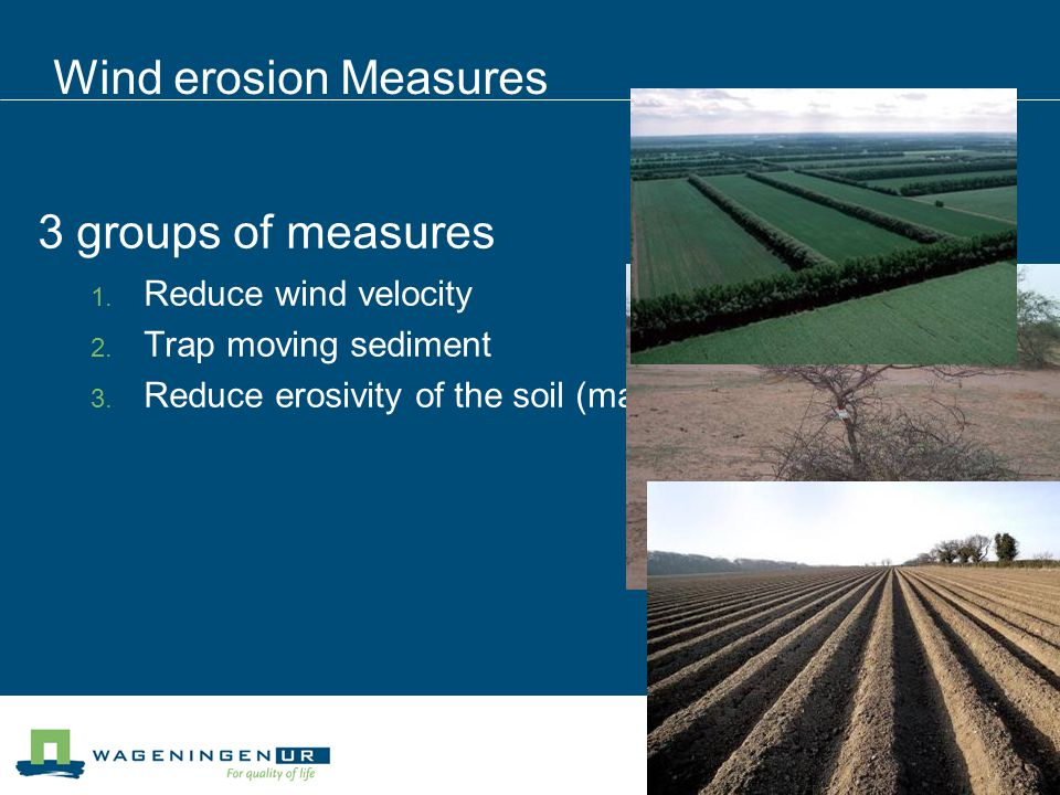 Wind erosion Measures 3 groups of measures  Reduce wind velocity  Trap moving sediment  Reduce erosivity of the soil (management measures)