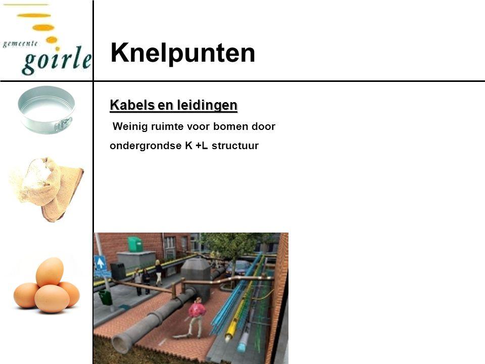 Kabels en leidingen Weinig ruimte voor bomen door ondergrondse K +L structuur Knelpunten