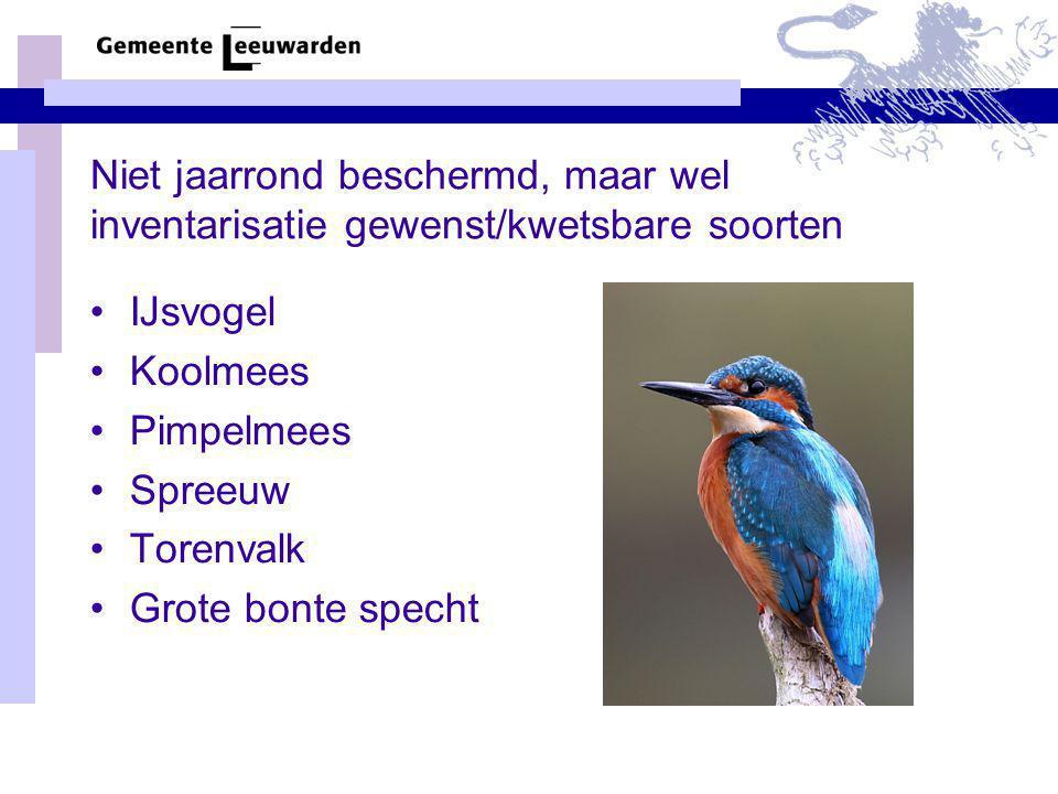 Niet jaarrond beschermd, maar wel inventarisatie gewenst/kwetsbare soorten IJsvogel Koolmees Pimpelmees Spreeuw Torenvalk Grote bonte specht