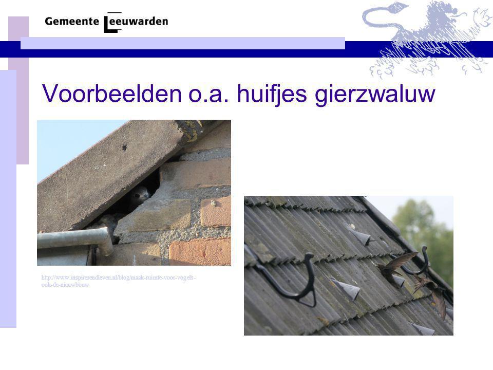 Voorbeelden o.a. huifjes gierzwaluw http://www.inspirerendleven.nl/blog/maak-ruimte-voor-vogels- ook-de-nieuwbouw