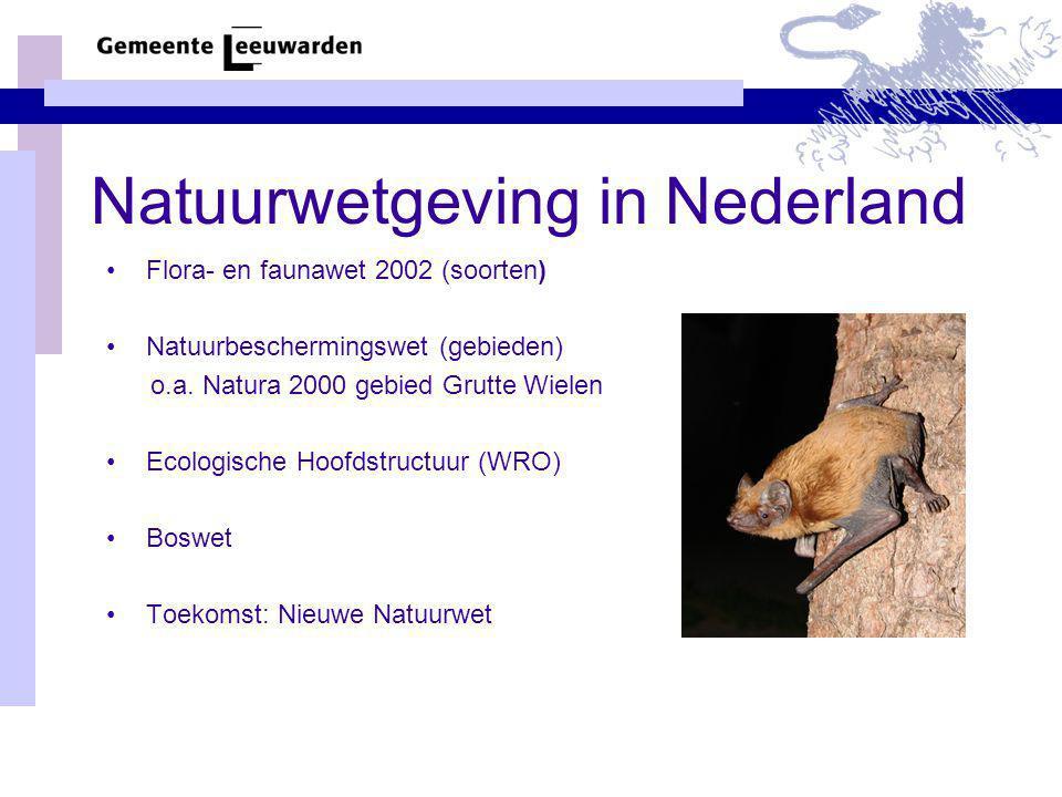 Natuurwetgeving in Nederland Flora- en faunawet 2002 (soorten) Natuurbeschermingswet (gebieden) o.a. Natura 2000 gebied Grutte Wielen Ecologische Hoof
