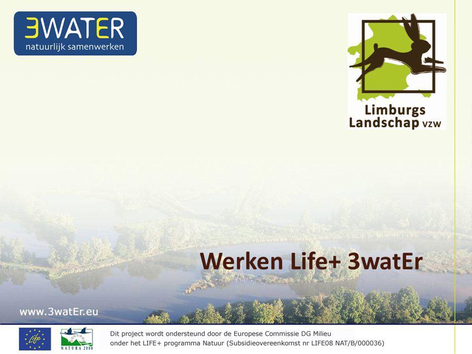 Werken Life+ 3watEr