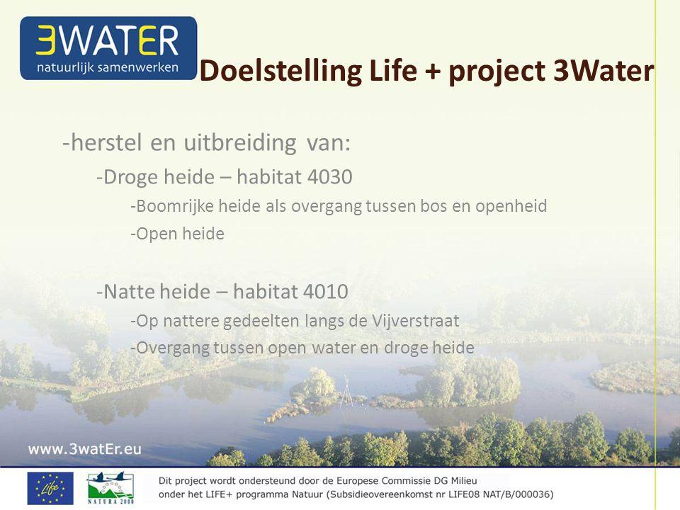 -herstel en uitbreiding van: -Droge heide – habitat 4030 -Boomrijke heide als overgang tussen bos en openheid -Open heide -Natte heide – habitat 4010