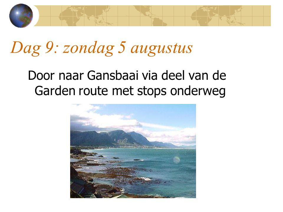 Dag 9: zondag 5 augustus Door naar Gansbaai via deel van de Garden route met stops onderweg