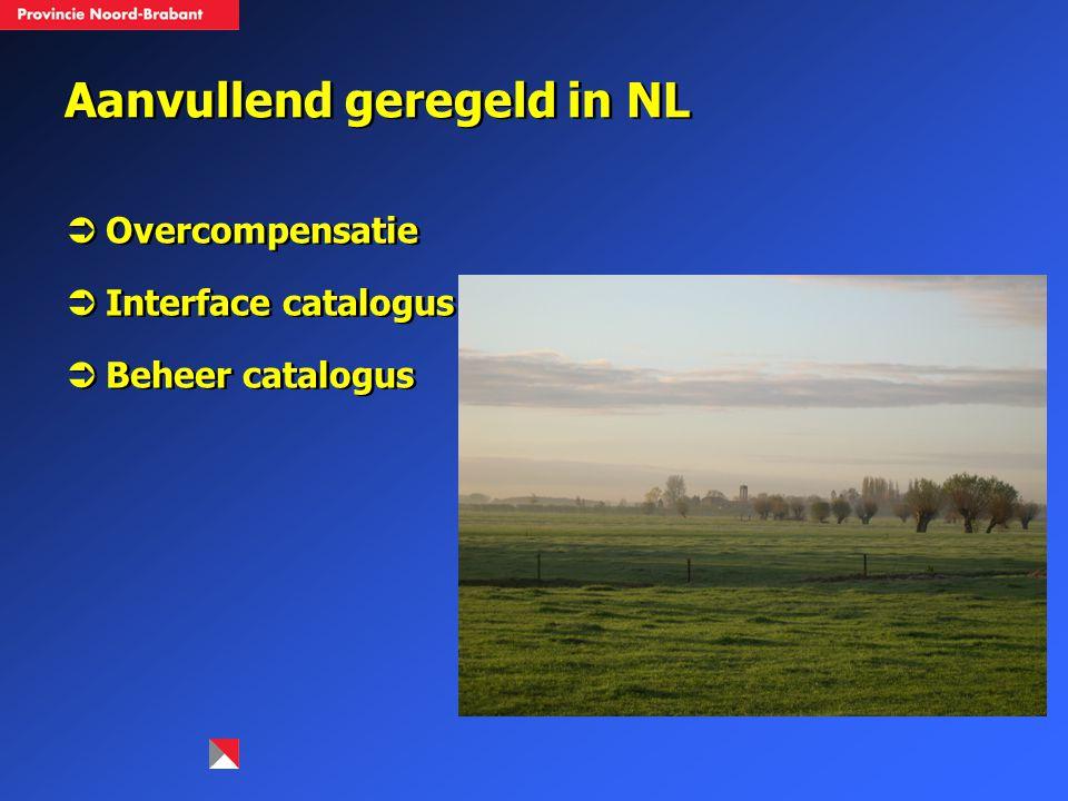 Aanvullend geregeld in NL  Overcompensatie  Interface catalogus  Beheer catalogus  Overcompensatie  Interface catalogus  Beheer catalogus