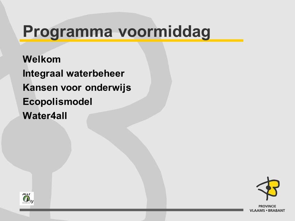 Ecopolismodel Tsjallingii 1992, Ecopolismodel Stad als motor van oplossingen voor milieuproblemen