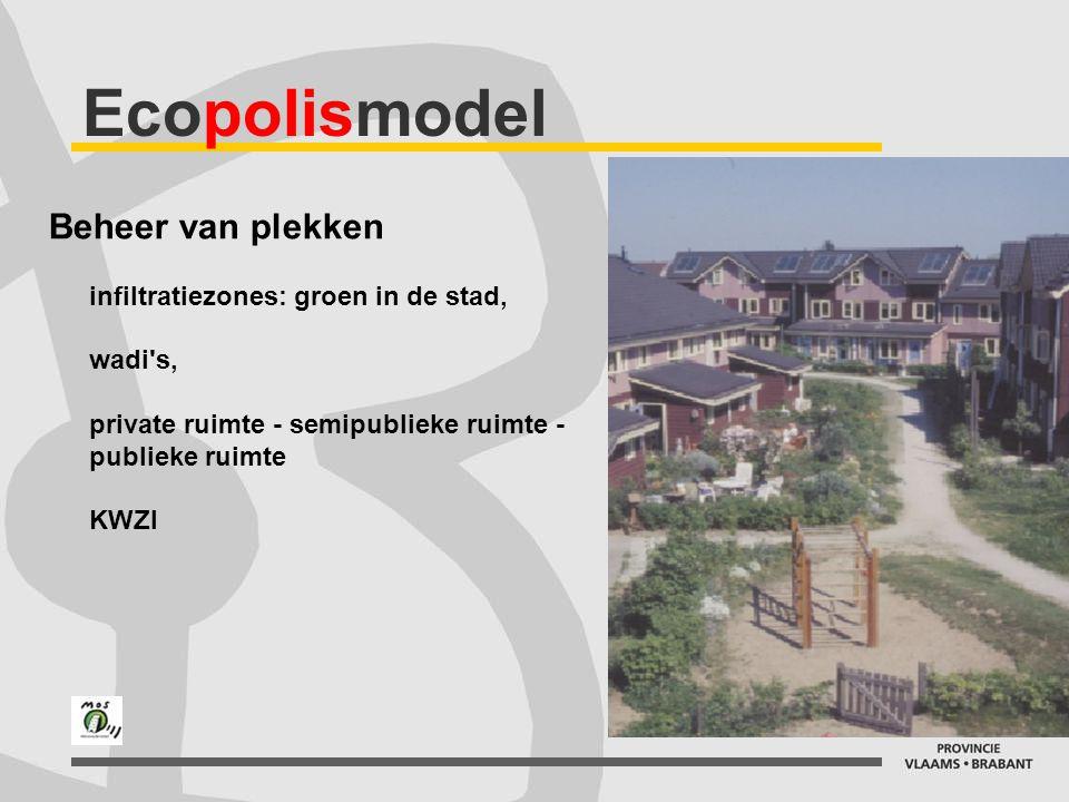 Ecopolismodel Beheer van plekken infiltratiezones: groen in de stad, wadi's, private ruimte - semipublieke ruimte - publieke ruimte KWZI