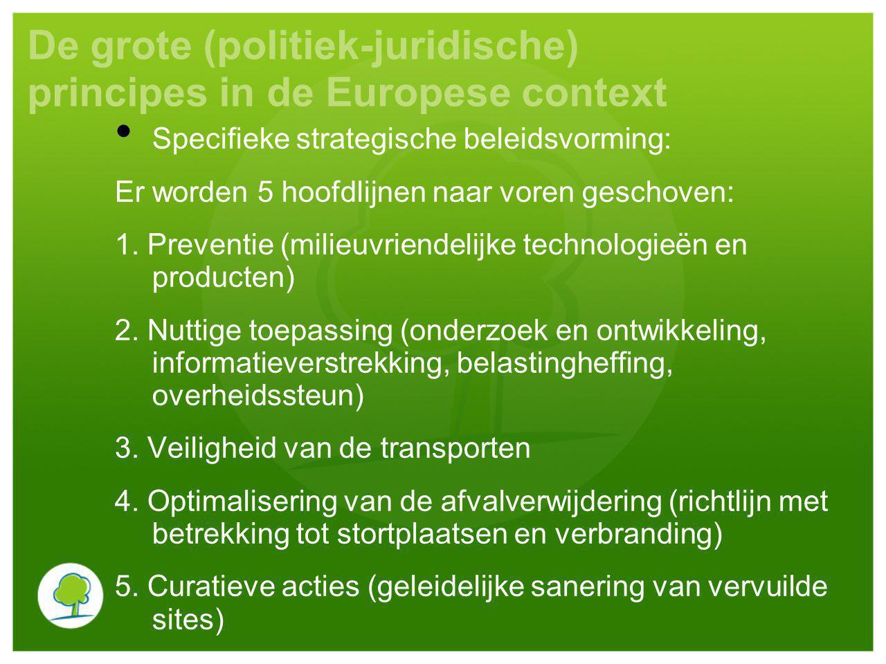 De grote (politiek-juridische) principes in de Europese context Specifieke strategische beleidsvorming: Er worden 5 hoofdlijnen naar voren geschoven:
