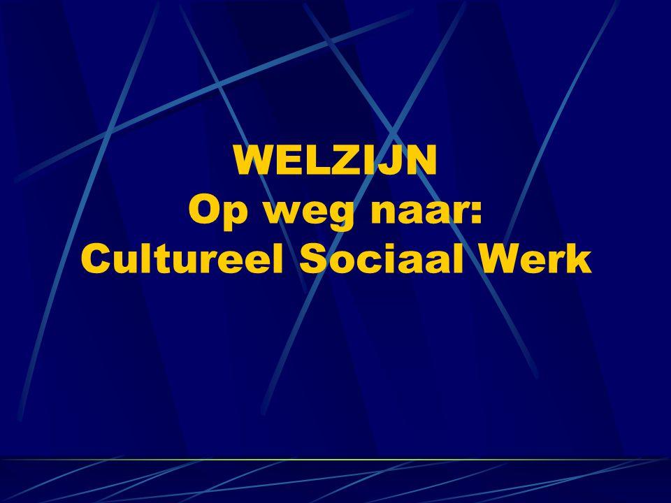 WELZIJN Op weg naar: Cultureel Sociaal Werk