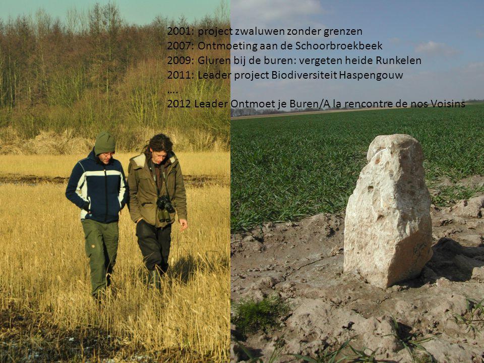 3 2001: project zwaluwen zonder grenzen 2007: Ontmoeting aan de Schoorbroekbeek 2009: Gluren bij de buren: vergeten heide Runkelen 2011: Leader project Biodiversiteit Haspengouw ….