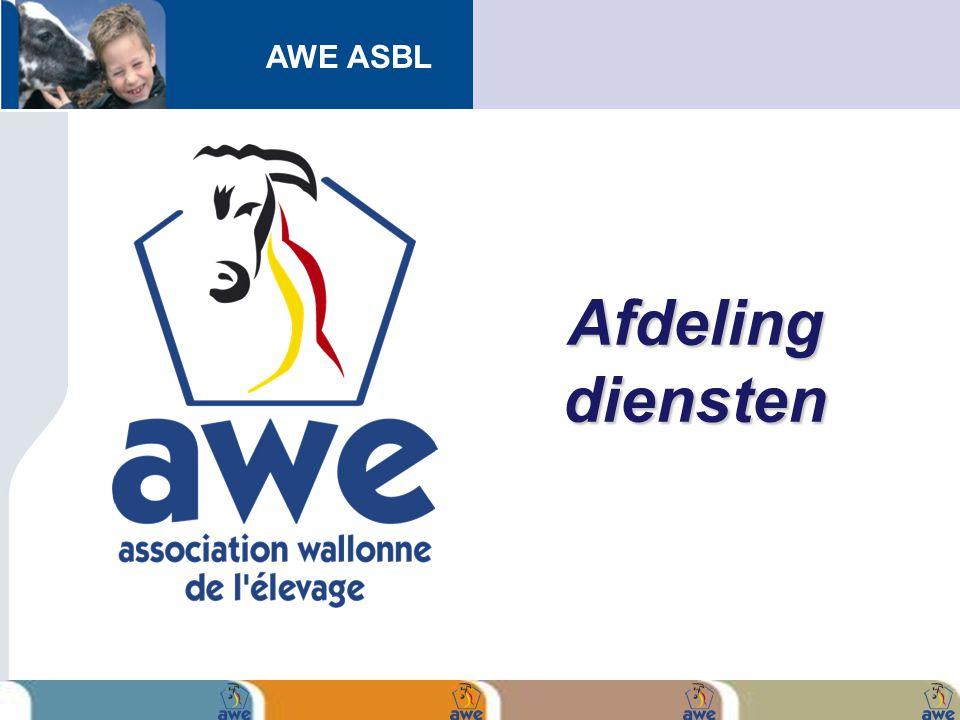 AWE ASBL Afdeling diensten