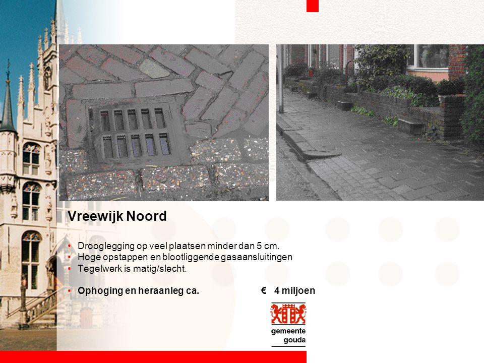 Vreewijk Noord Drooglegging op veel plaatsen minder dan 5 cm. Hoge opstappen en blootliggende gasaansluitingen Tegelwerk is matig/slecht. Ophoging en