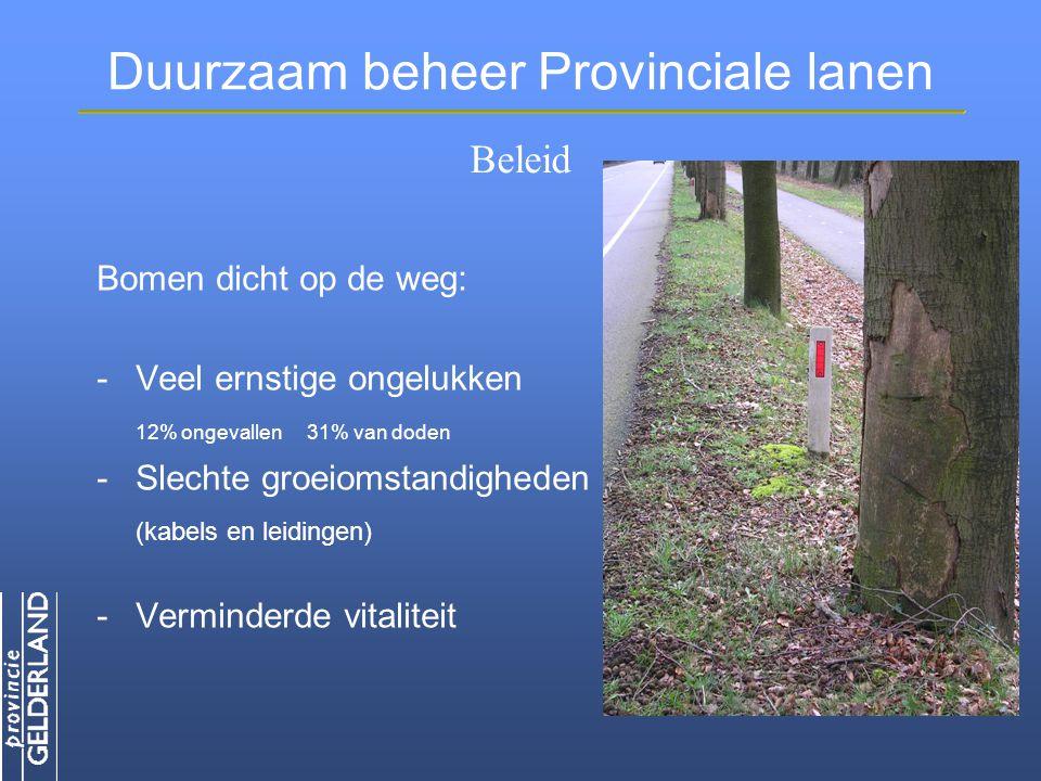 Duurzaam beheer Provinciale lanen Bomen dicht op de weg: -Veel ernstige ongelukken 12% ongevallen 31% van doden -Slechte groeiomstandigheden (kabels en leidingen) -Verminderde vitaliteit Beleid