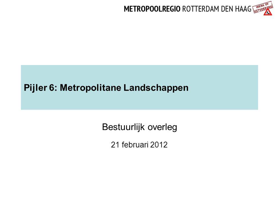 Pijler 6: Metropolitane Landschappen Bestuurlijk overleg 21 februari 2012
