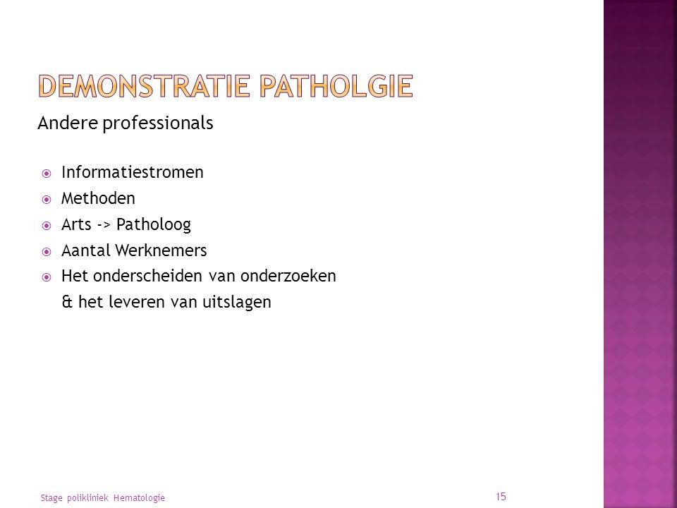 Andere professionals  Informatiestromen  Methoden  Arts -> Patholoog  Aantal Werknemers  Het onderscheiden van onderzoeken & het leveren van uitslagen Stage polikliniek Hematologie 15