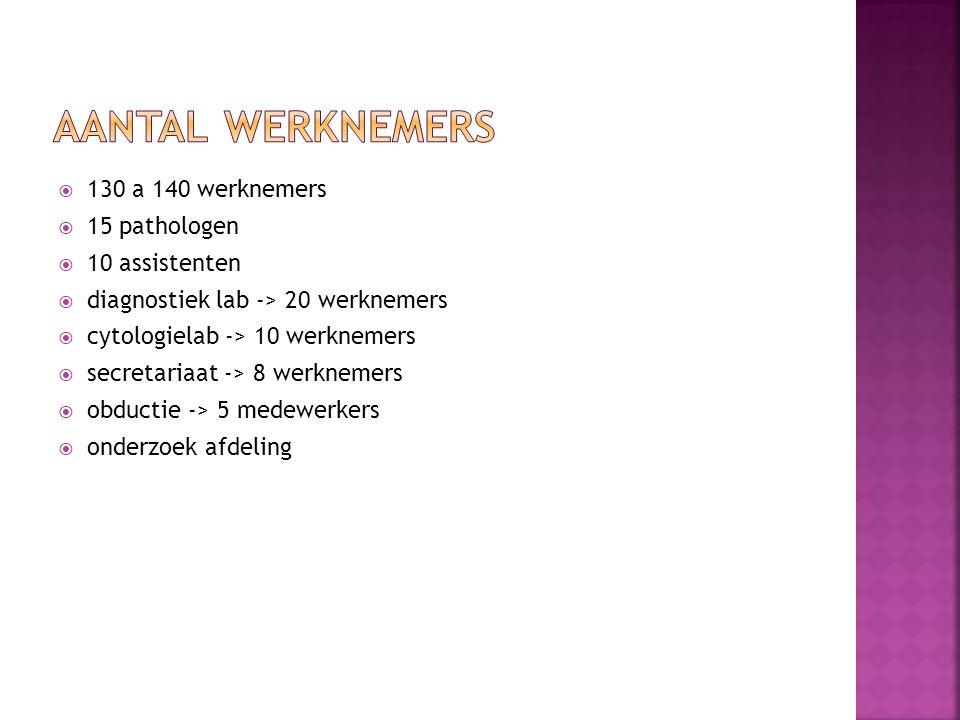  130 a 140 werknemers  15 pathologen  10 assistenten  diagnostiek lab -> 20 werknemers  cytologielab -> 10 werknemers  secretariaat -> 8 werknemers  obductie -> 5 medewerkers  onderzoek afdeling