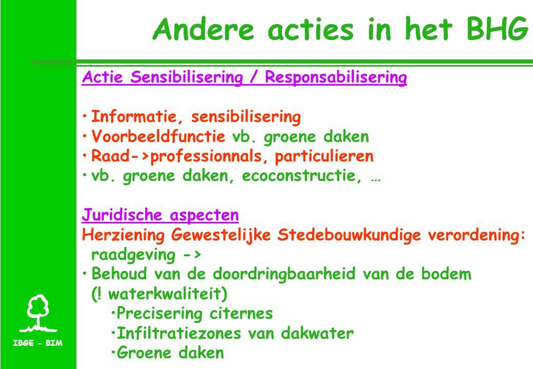 Andere acties in het BHG Actie Sensibilisering / Responsabilisering Informatie, sensibilisering Voorbeeldfunctie vb.