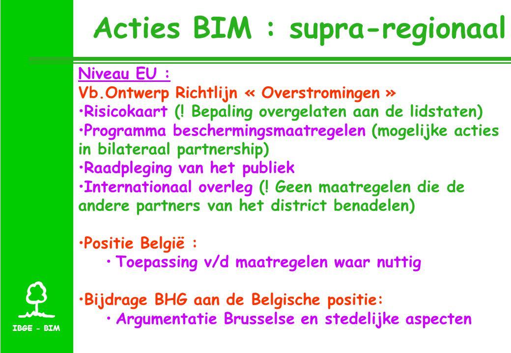 IBGE - BIM Acties BIM : supra-regionaal Niveau EU : Vb.Ontwerp Richtlijn « Overstromingen » Risicokaart (.