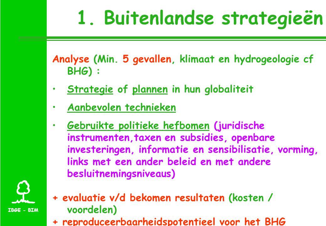 IBGE - BIM 1. Buitenlandse strategieën Analyse (Min.