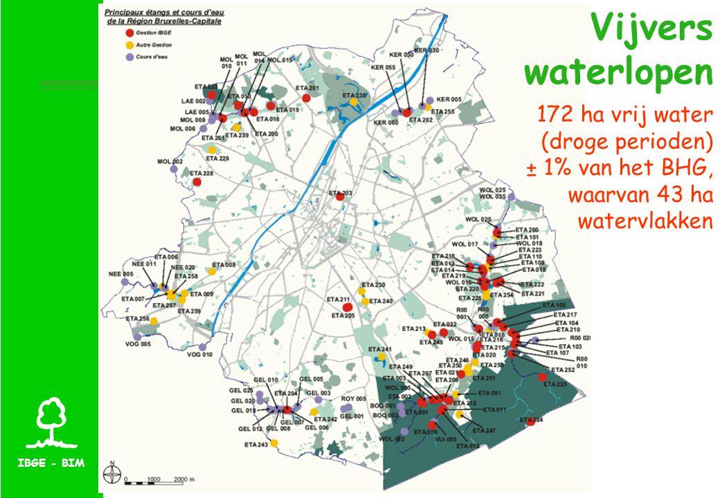 IBGE - BIM Vijvers waterlopen 172 ha vrij water (droge perioden) ± 1% van het BHG, waarvan 43 ha watervlakken